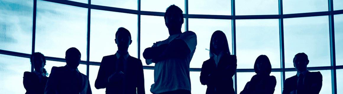 Föreläsare organisationsstyrning