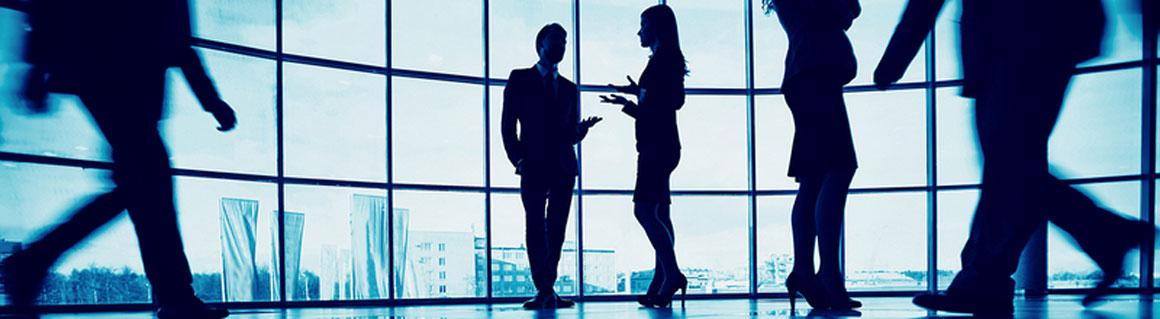 Föreläsare företagskultur