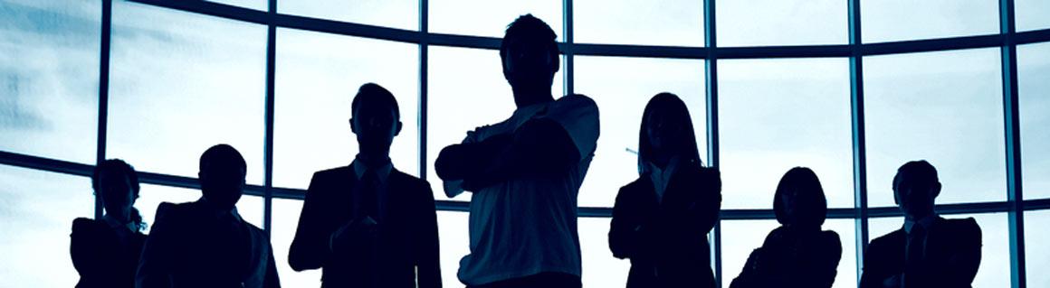 Föreläsare företagsledare