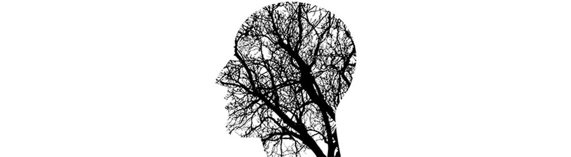 Föreläsare hjärnan