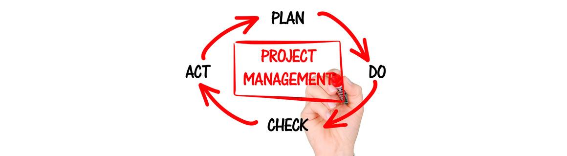 Föreläsare projektledning